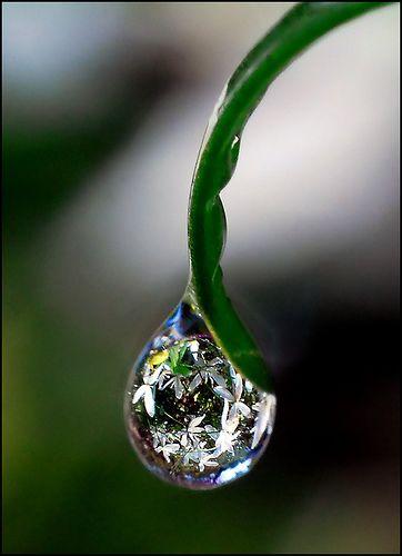 Miben Rejlik A Természet Vonzereje? Újabb Vitalitástipp A Lendületes Nyárkezdéshez!